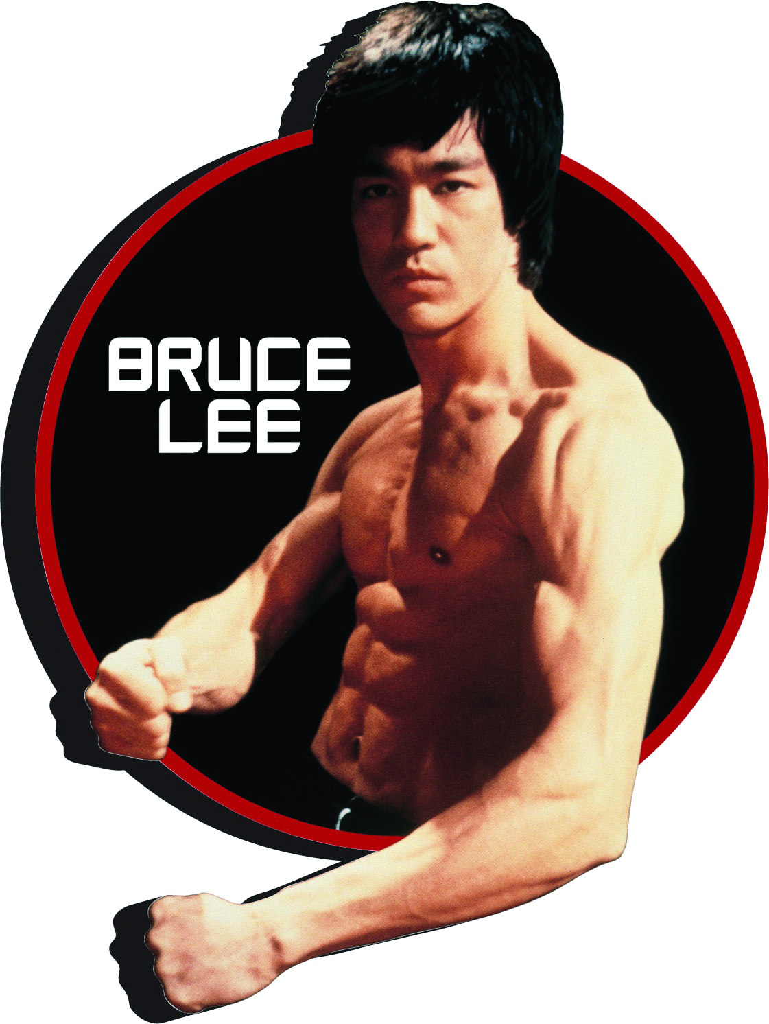 BRUCE LEE CIRCLE FUNKY CHUNKY MAGNET
