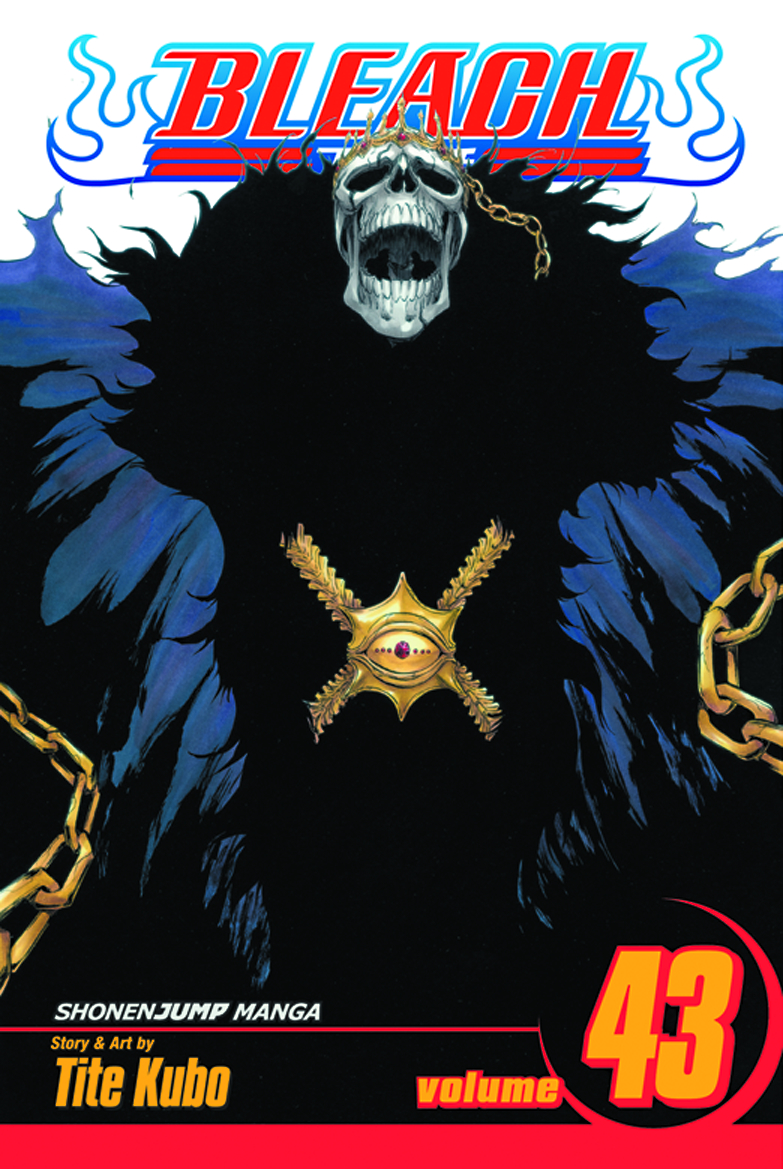 BLEACH GN VOL 43