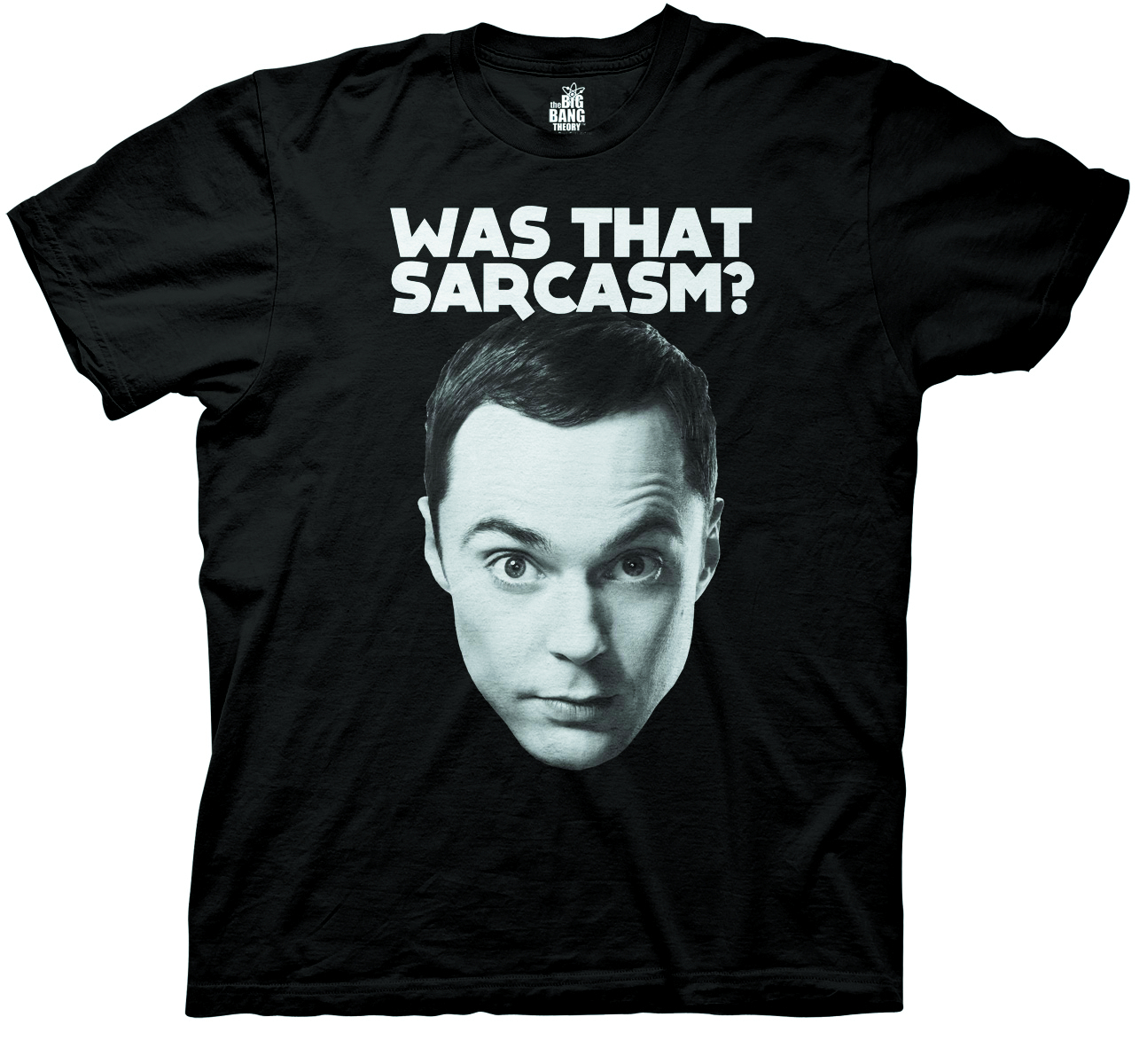 BIG BANG THEORY WAS THAT SARCASM BLK T/S MED