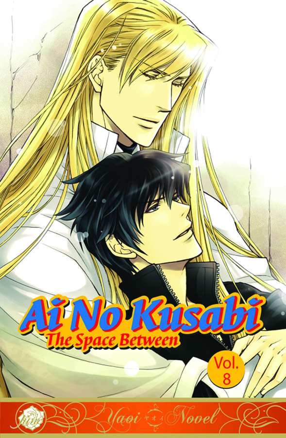 AI NO KUSABI SPACE BETWEEN NOVEL VOL 08 (OF 8)