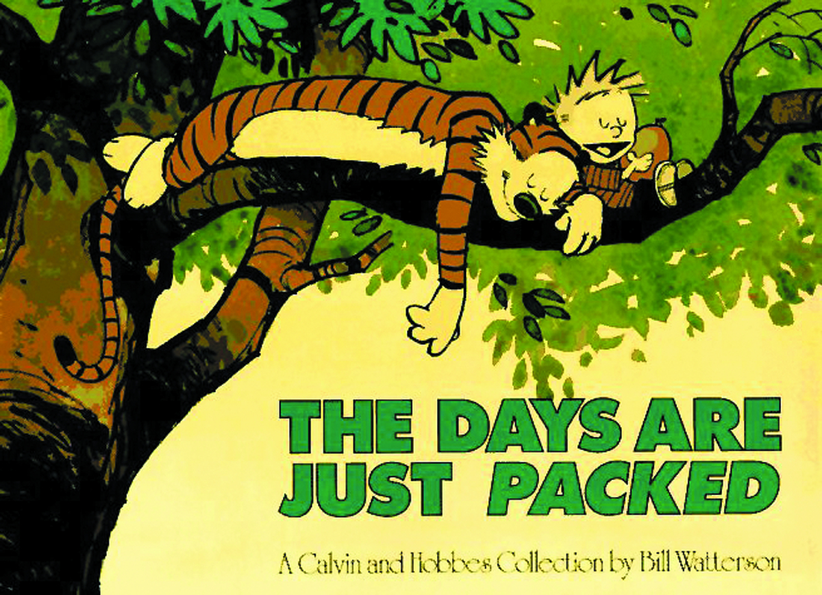 (USE FEB158134) CALVIN & HOBBES DAYS ARE JUST PACKED