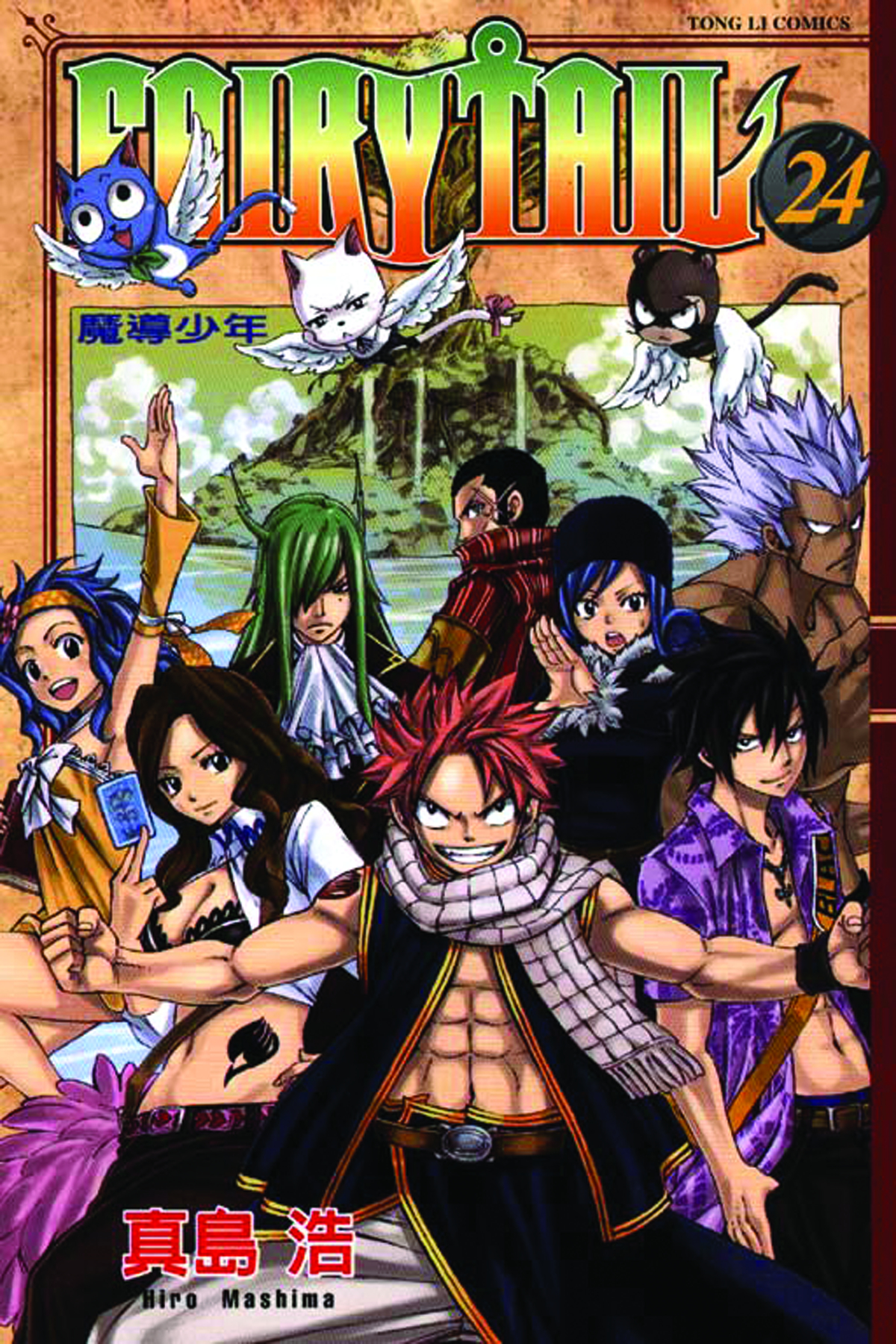 FAIRY TAIL GN VOL 24