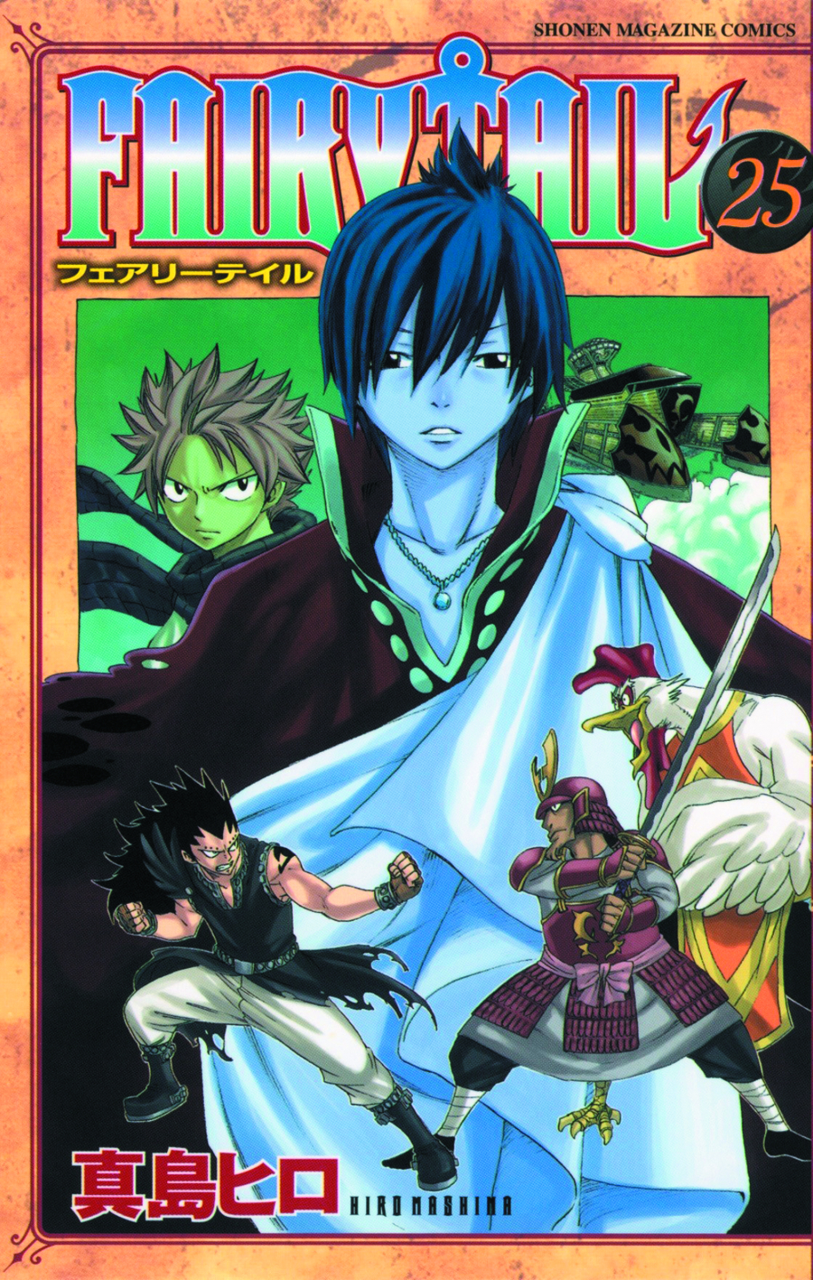 FAIRY TAIL GN VOL 25