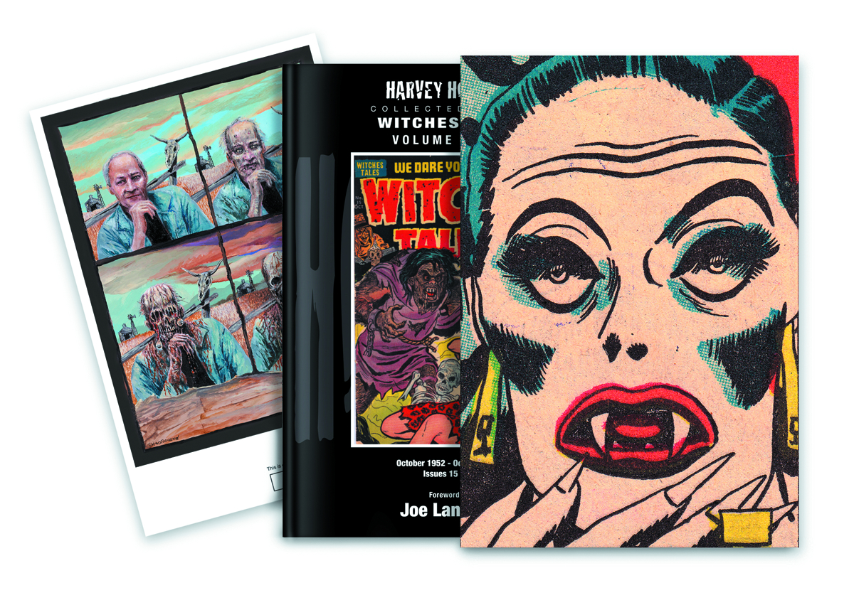 HARVEY HORRORS WITCHES TALES SLIPCASE ED VOL 03