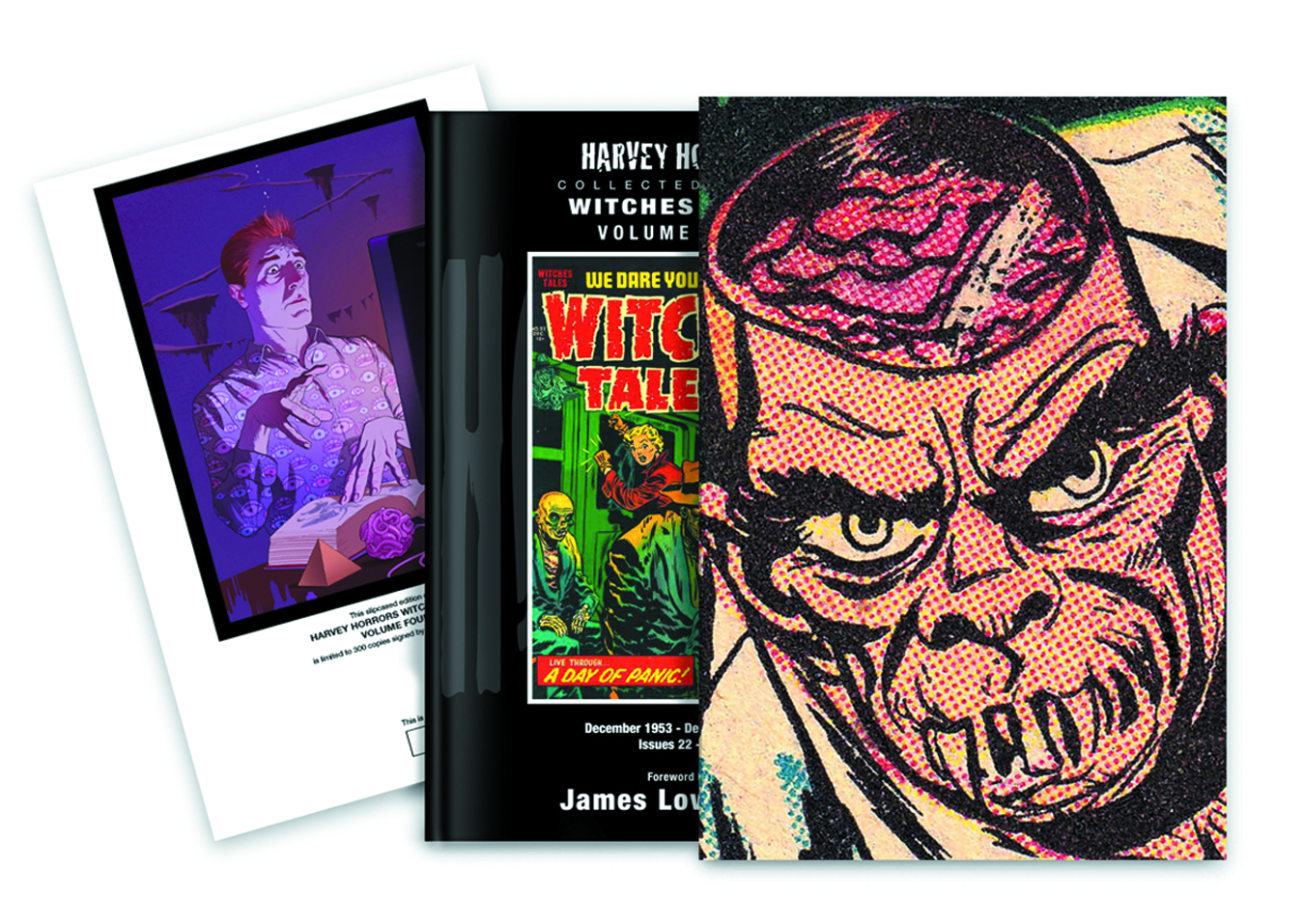 HARVEY HORRORS WITCHES TALES SLIPCASE ED VOL 04