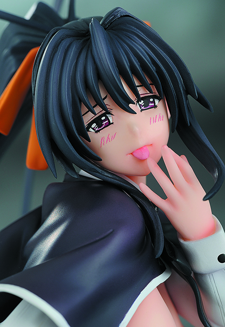 HIGH SCHOOL DXD AKENO HIMEJIMA PVC FIG