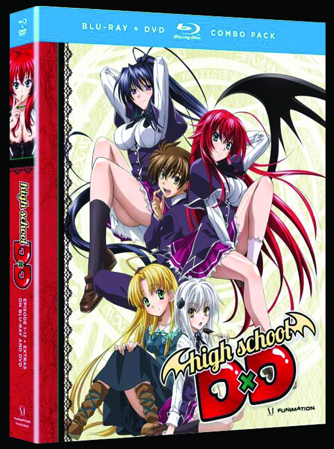 HIGH SCHOOL DXD THE SERIES BD + DVD LTD ED