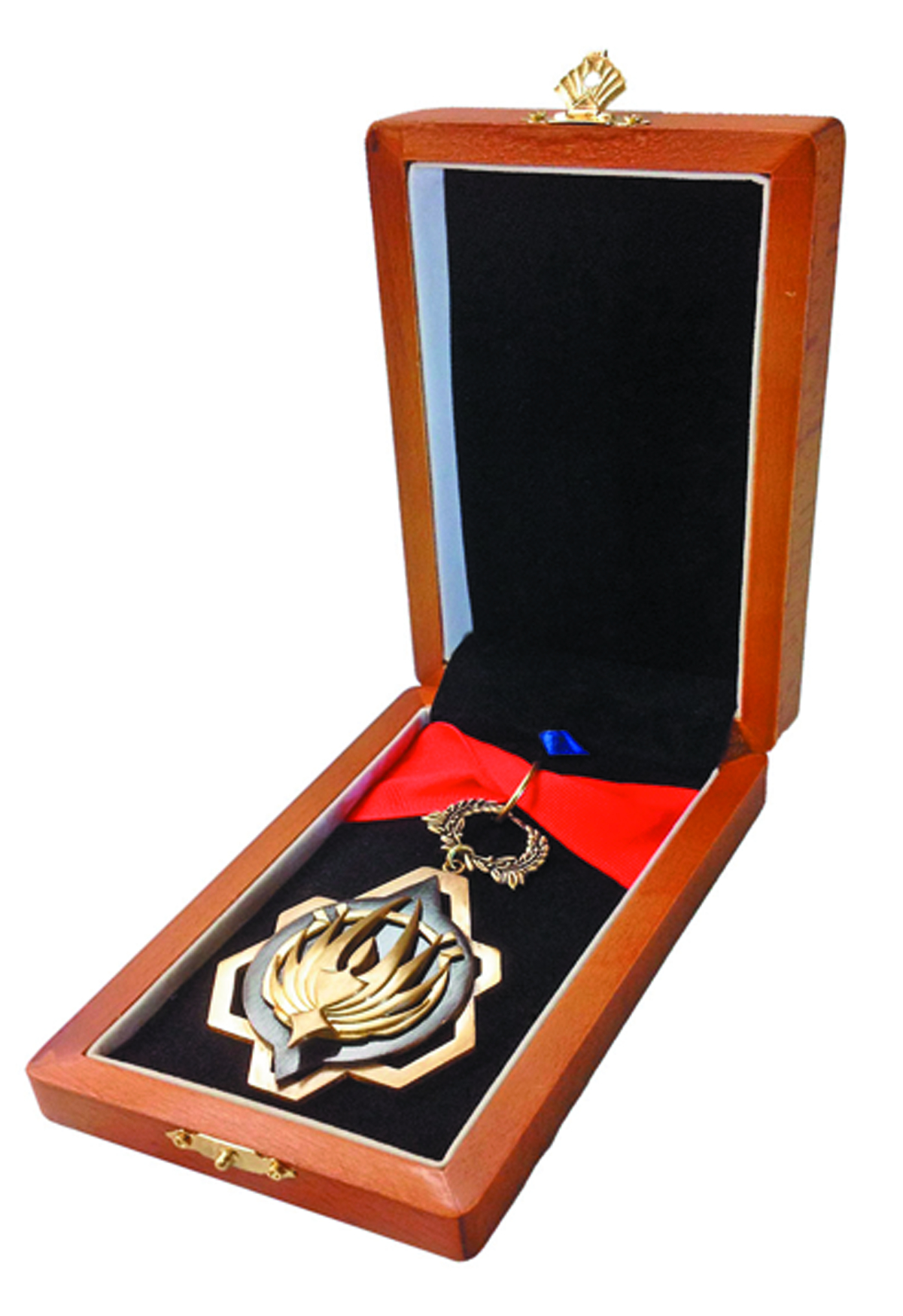 BSG MEDAL OF DISTINCTION 1/1 SCALE PROP REPLICA