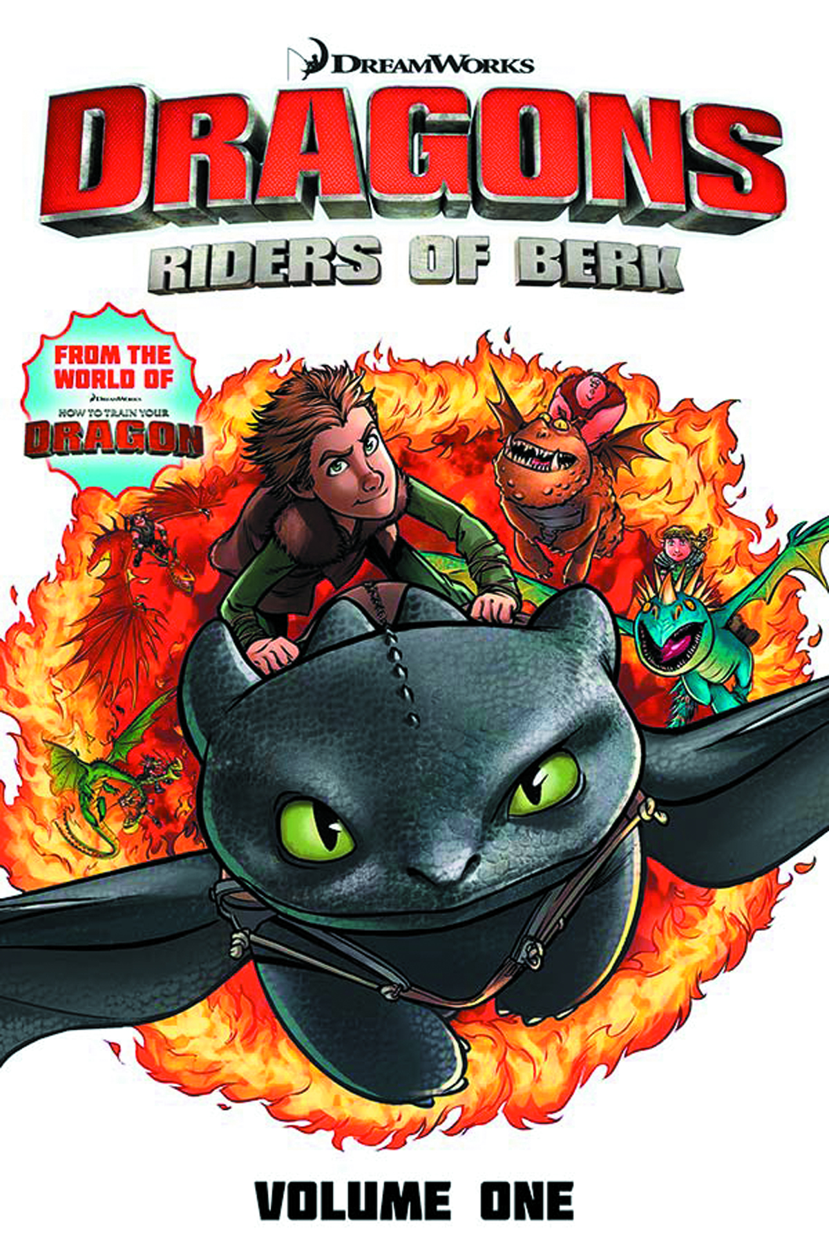DRAGONS RIDERS OF BERK COLLECTION TP VOL 01
