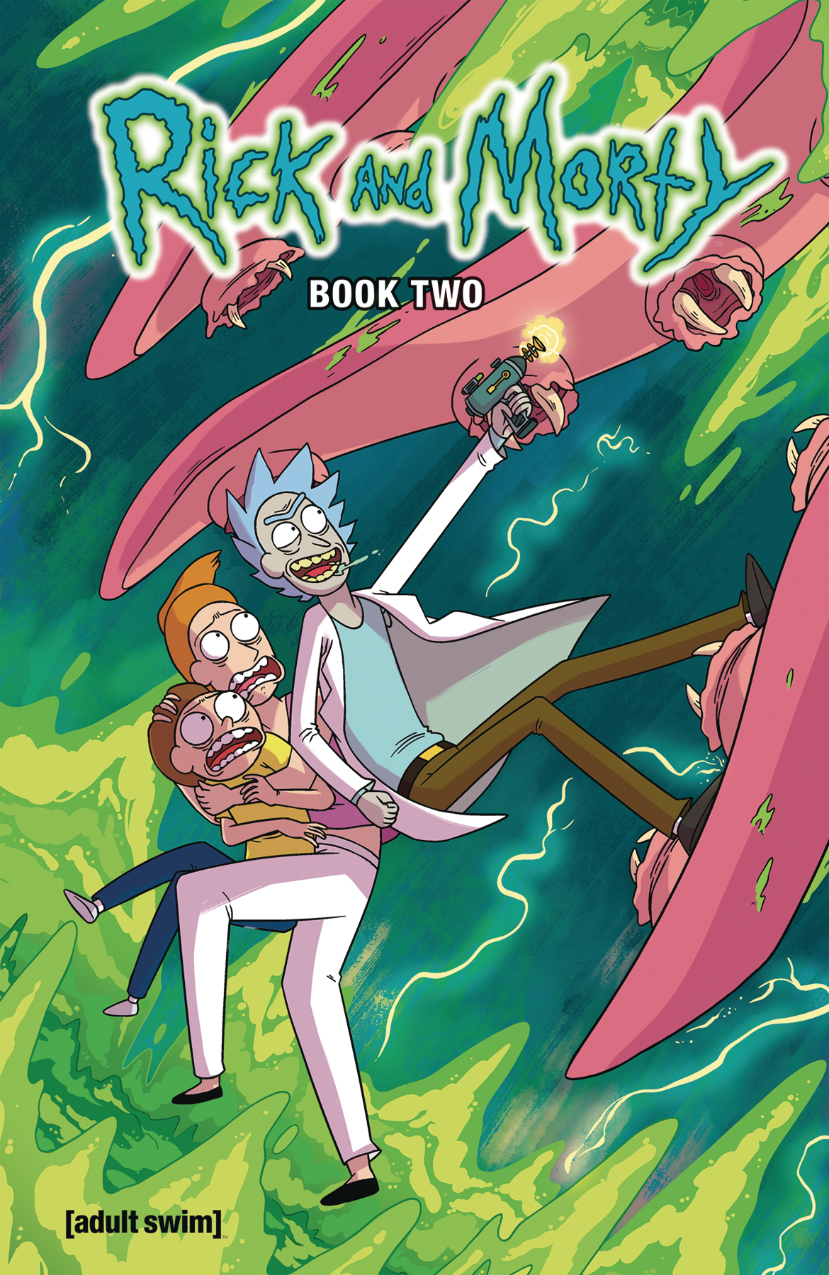 RICK AND MORTY HC BOOK 02 DLX ED