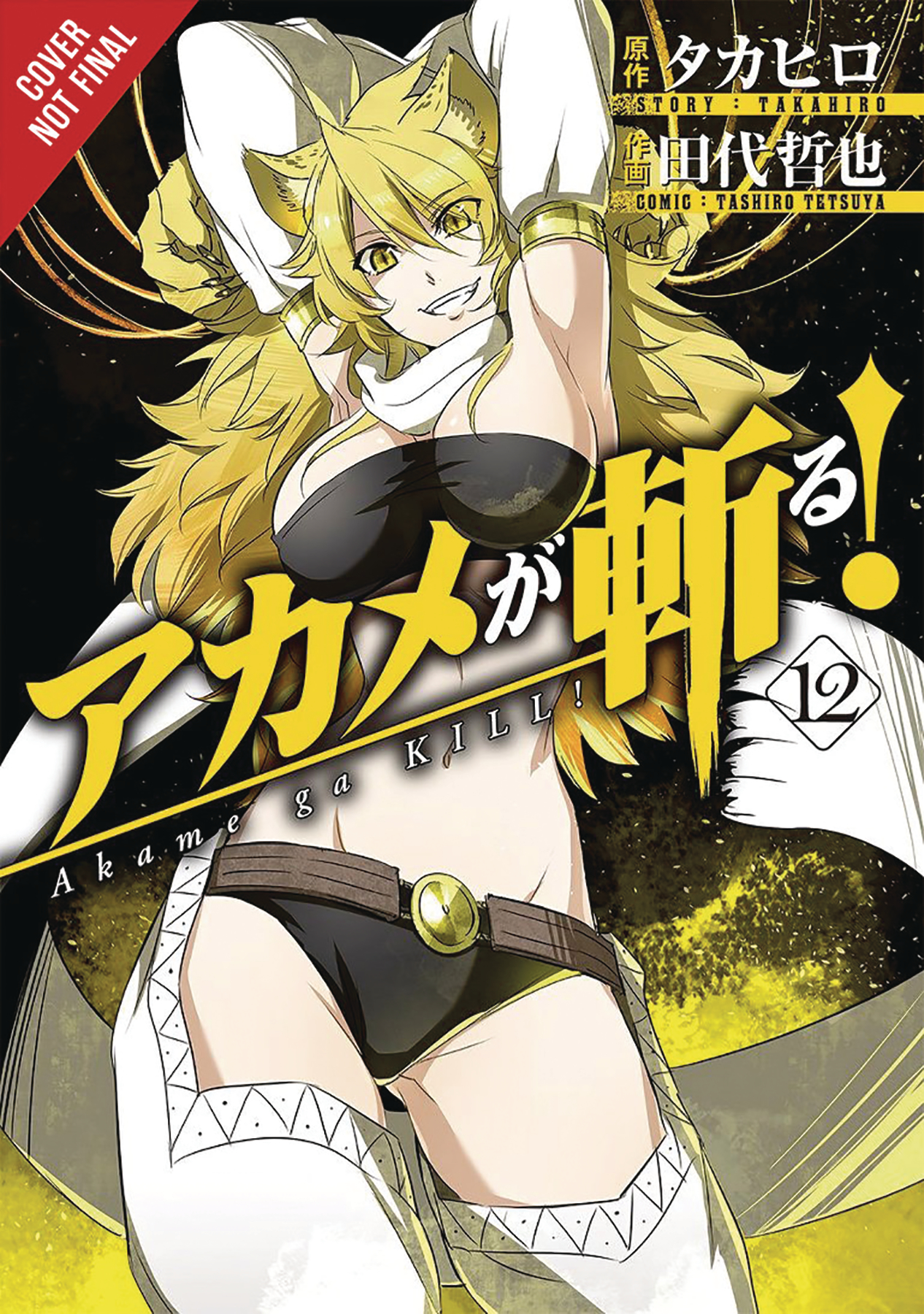 AKAME GA KILL GN VOL 12