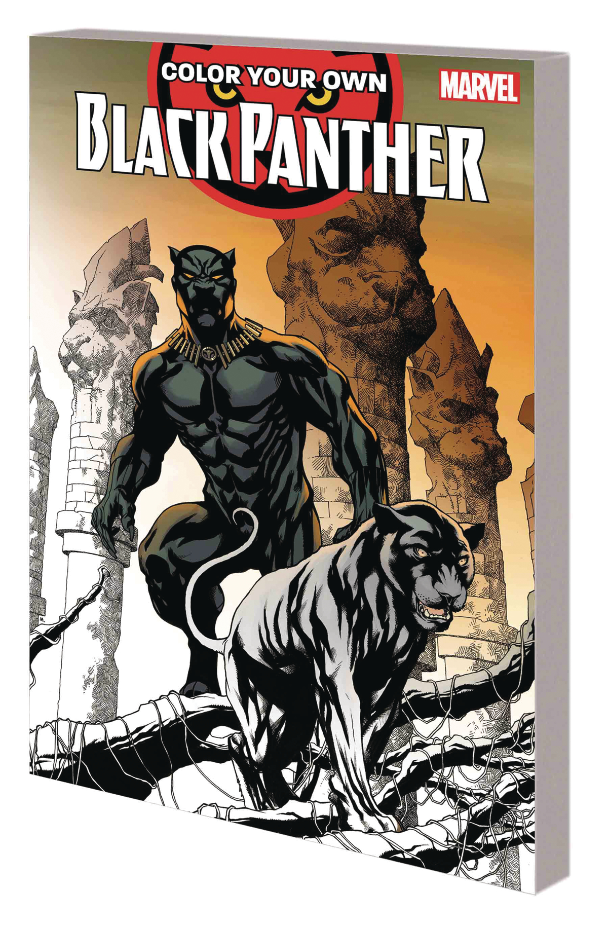 COLOR YOUR OWN BLACK PANTHER TP