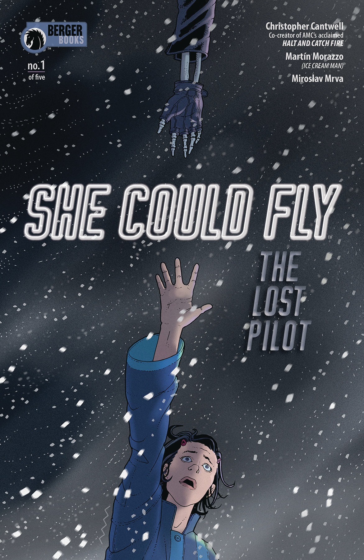 SHE COULD FLY LOST PILOT #1 (OF 5) (MR)