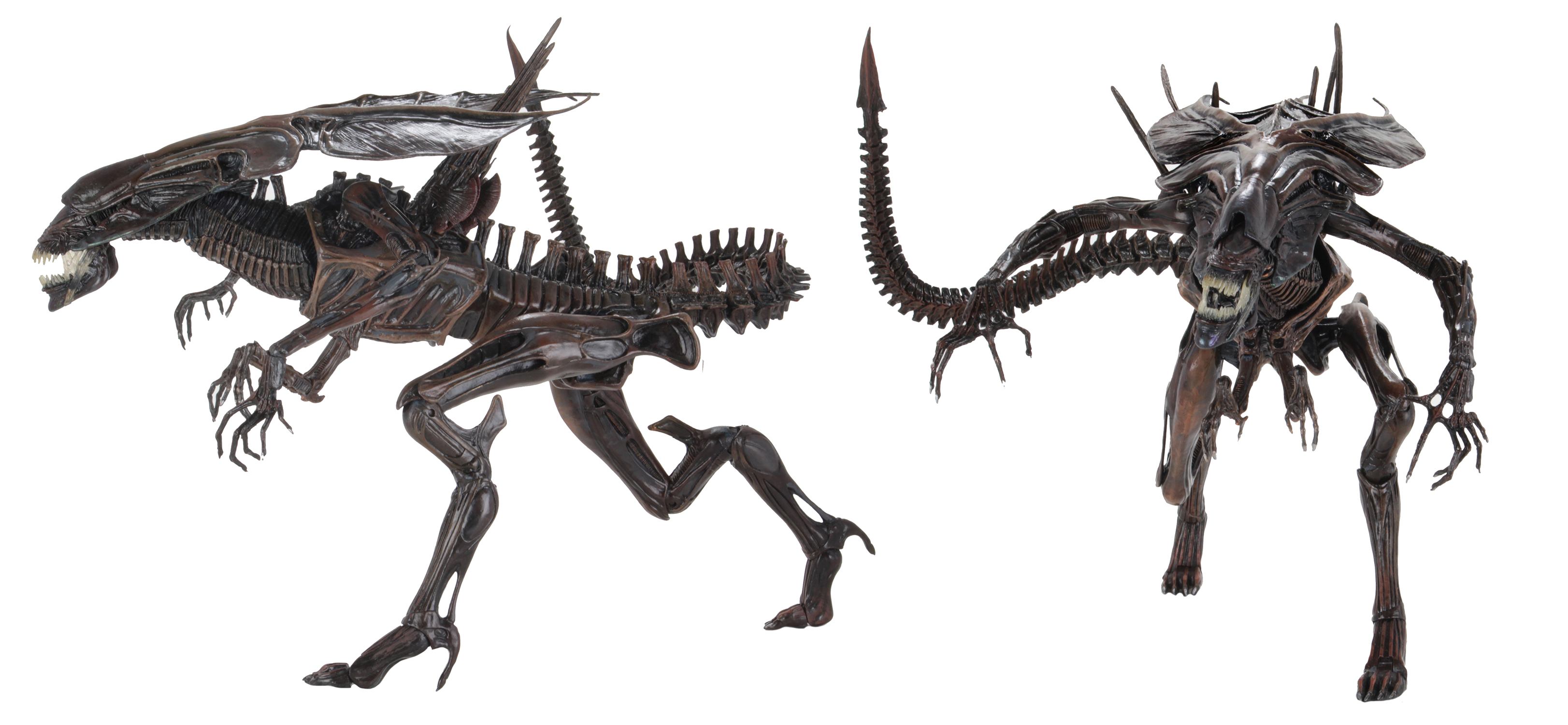 ALIEN RESURRECTION XENOMORPH QUEEN ULTRA DLX AF