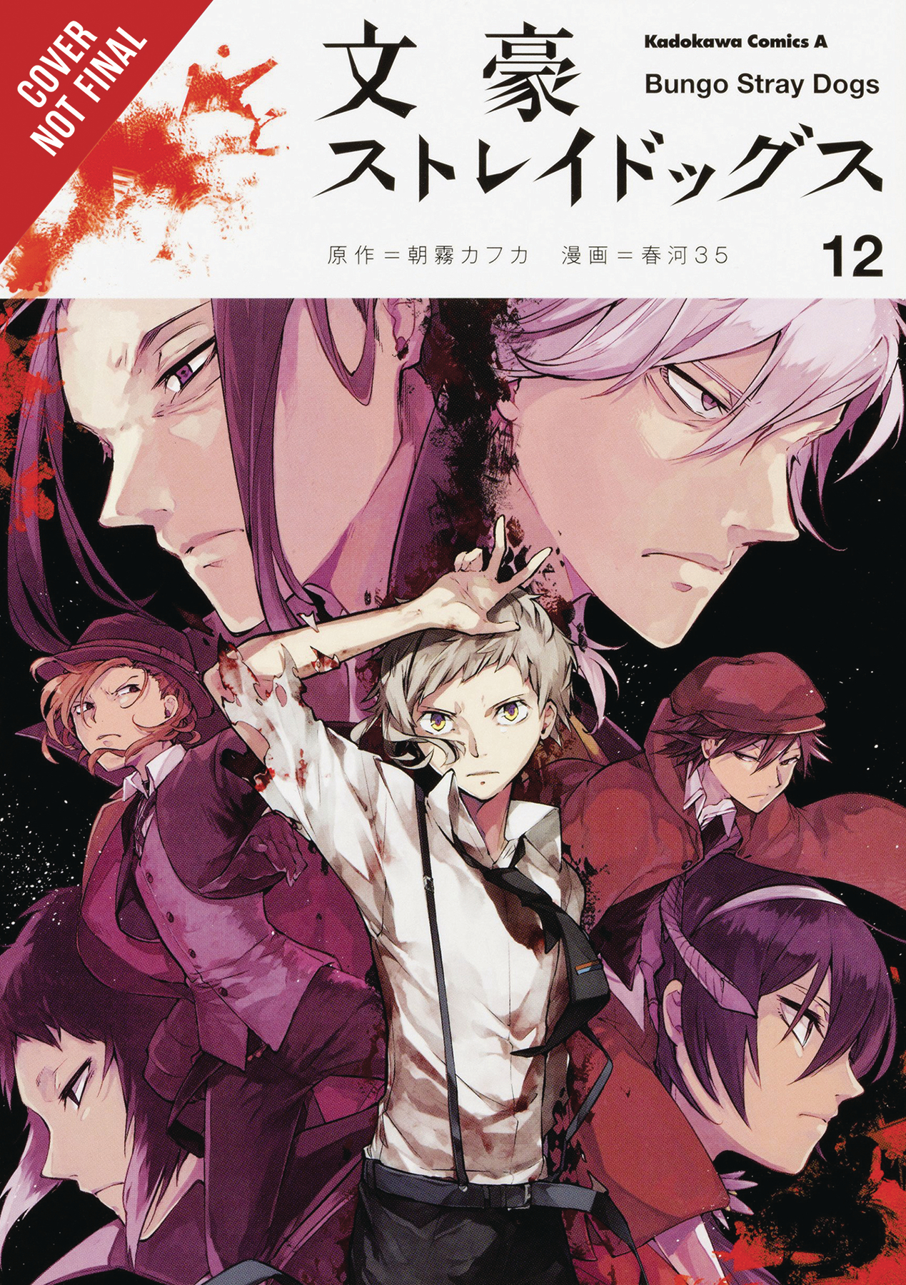 BUNGO STRAY DOGS GN VOL 12
