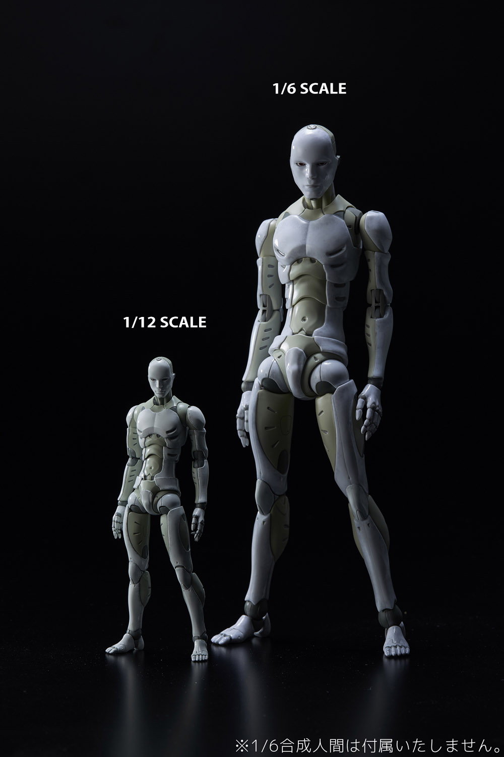 TOA HEAVY INDUSTRIES SYNTHETIC HUMAN PX 1/6 SCALE AF (Net) (