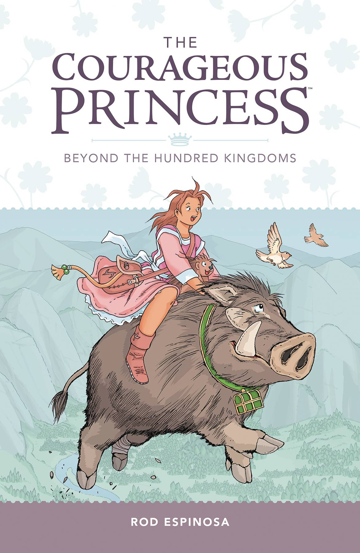 COURAGEOUS PRINCESS TP VOL 01 BEYOND THE HUNDRED KINGDOMS (C