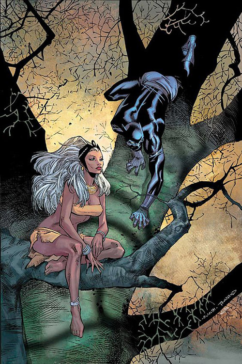 Storm and Panther. Art by Olivier Coipel.